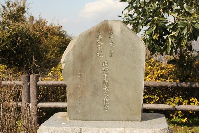 20120311_伊予ヶ岳_0074