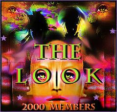 Award te look 2000 miembros