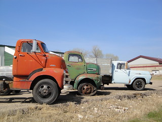 53 Chevrolet & 51 Ford & 59 Ford Trucks