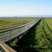 SB12_Baylands Nature Center Boardwalk_cr_Ron_Horii