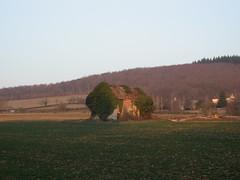 DSCN9741 - Photo of Savianges