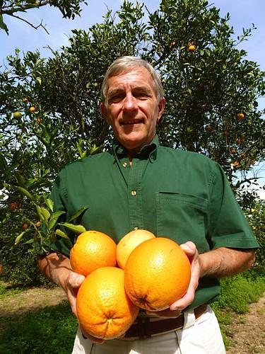 gary-scott-orange