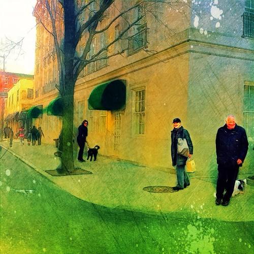 Street Corner Concerto