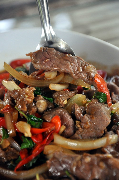 Stir Fried Sliced Beef with Thai Basil at Ma am Restaurant Koh Samui Big Boy Owen