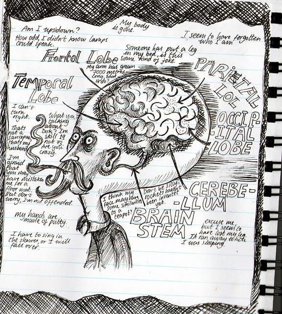 The neurologist's brain