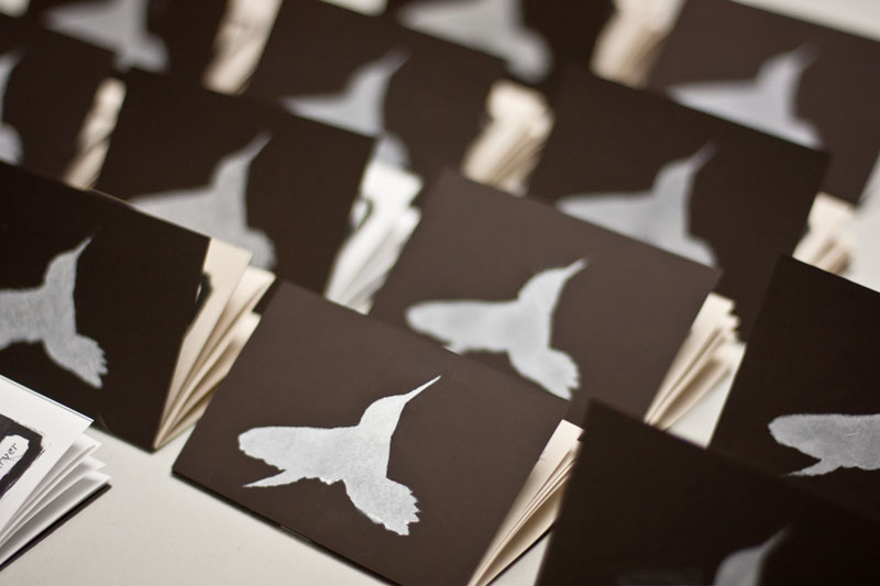 hummingbirdbook-1