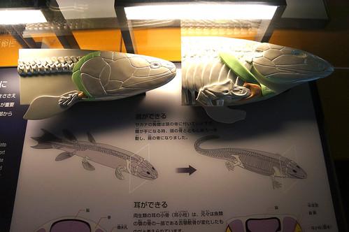 DSC03609