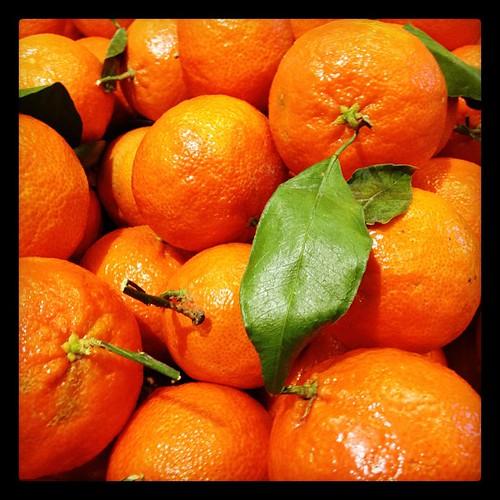 Orange-a-licious!