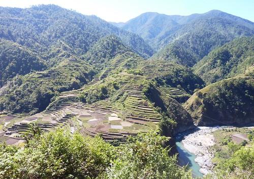 Luzon-Bontoc Tinglayen (47)
