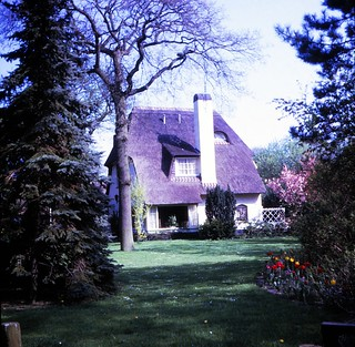 Netherlands   -   Zandvrood    -   A Thatched Roof  -  May 1970