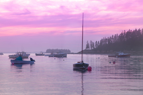 'Calm Cove', United States, Maine, Deer Isle, Stonington, Burnt Cove, Lobster Boats
