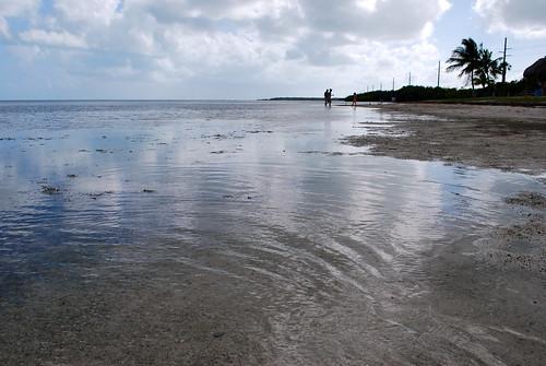 Wading