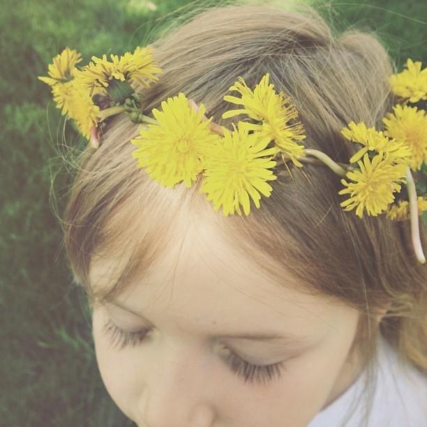My Sunday...dandelion crowns and sunshine. #fmsphotoaday #mysunday #dandelion #flower #crown #spring #childhood