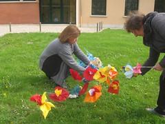 en reflet fleurs normandes fleurs bleues - Photo of Mesnil-sous-Vienne