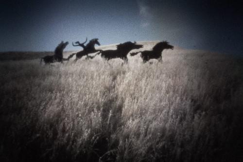 Wild Horse Pinhole number 2