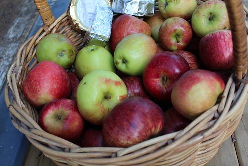 Apples from Gisborne Farmers Market