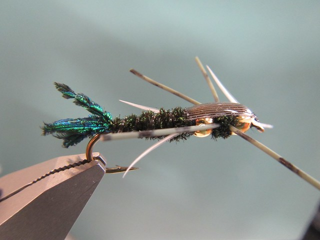 Double Bead Peackock Epoxy Backed Nymph