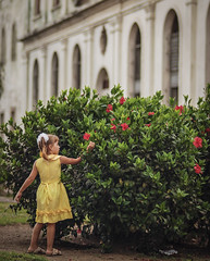 flores para la niña