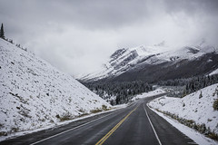 Travel the Icefields Parkway!!