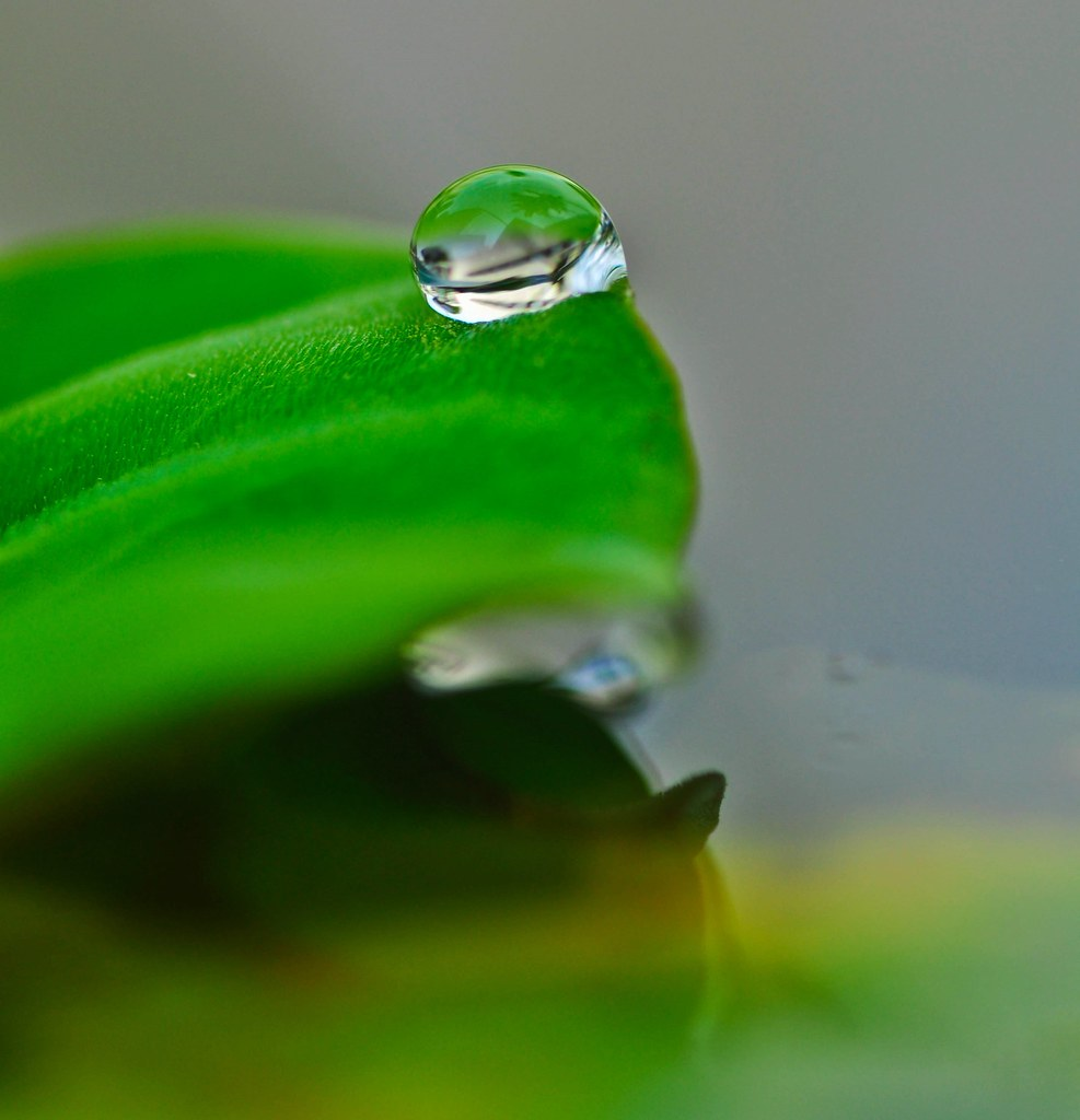 Not just a drop of water 不只是一滴水 ...