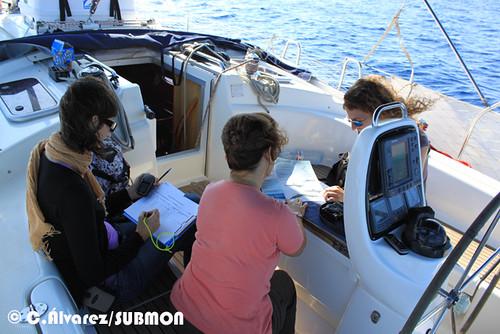 Voluntarias tomando datos de avistamientos en Cañones del Maresme