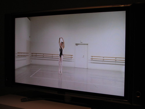 The 15th Japan Media Arts Festival -ballet rotoscope-