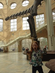 Fernbank Museum by PrincessKaryn