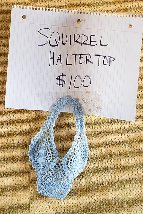 02-03-12 squirrel halter top_