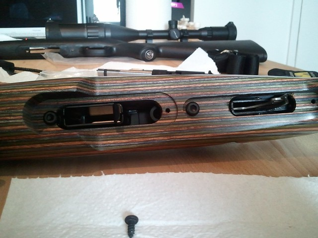 Browning tronbone & Savage MkII FV Custom 6810585344_c3026ce312_z
