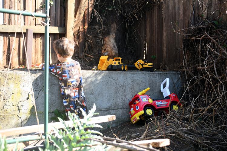 garden friday 03 09 12