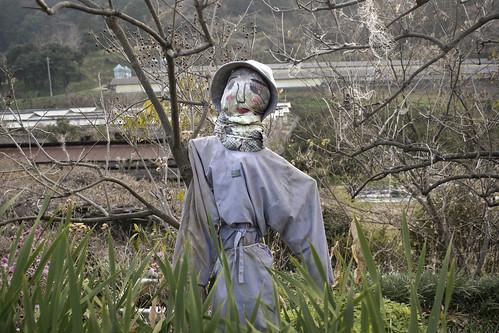 JZ C1 03 001 福岡県糟屋郡新宮町 α77 + MAF 24 2.8
