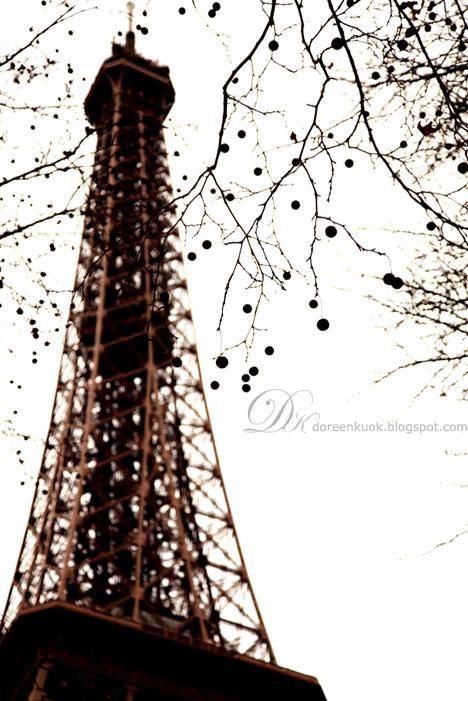 20111225_Paris 028