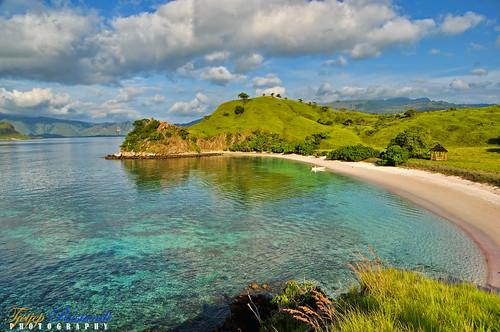 flores indonesia geotagged nikkor ntt teeje d5000 eastnusatenggara pinkisland geo:lat=8609865119810145 geo:lon=11952391806082153