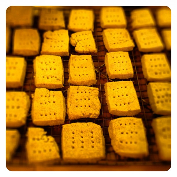 lavender shortbread army from @yougrowgirl 's new book #teatime