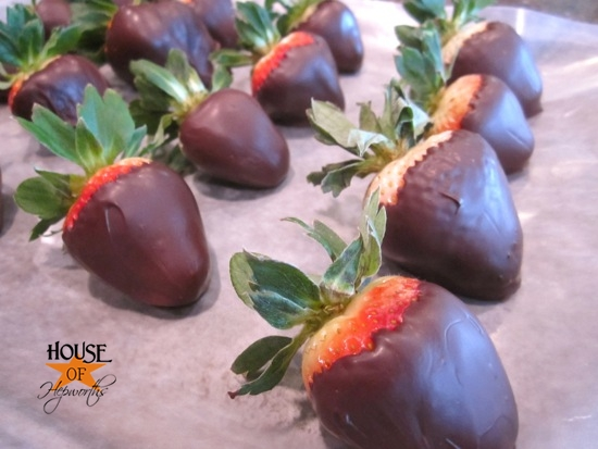 chocolate_covered_strawberries_hoh_11