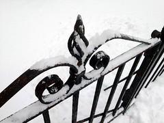snow iron
