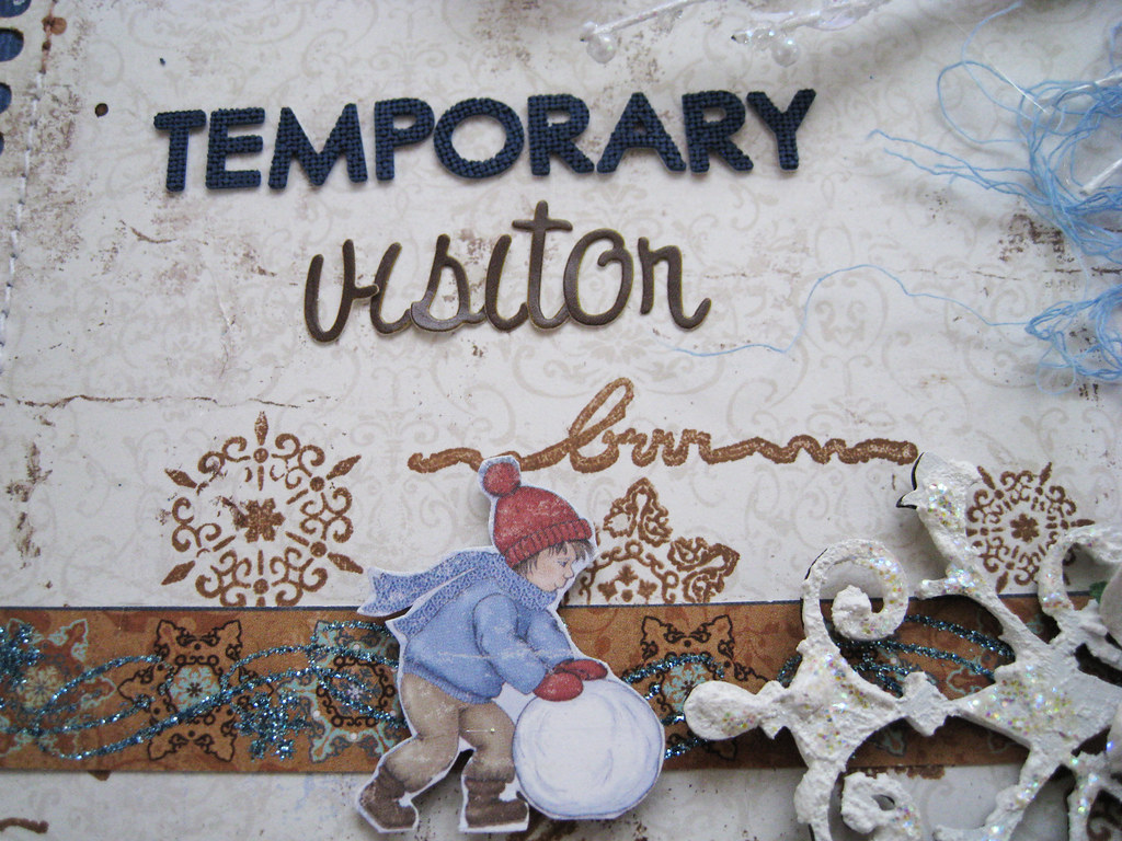 #97_Temporary Visitor - 2