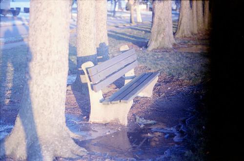 Bench in Sun II