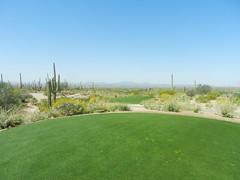 Executive At Continental Golf Course - Public