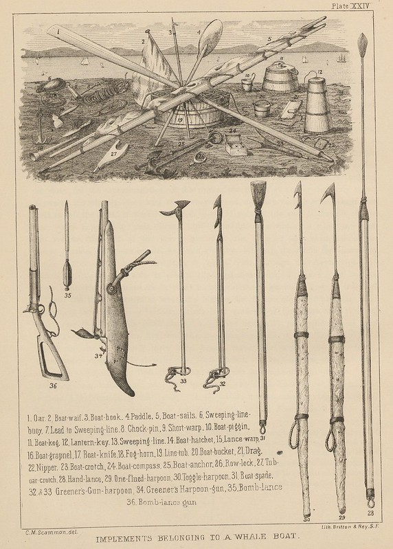 Implements belonging to a whale boat