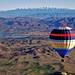 Vindemia Balloon Temecula by ms4jah