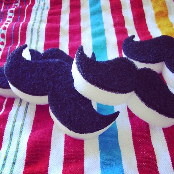 estropajos bigotes