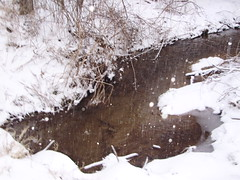 Concord Creek in Snow