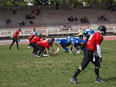 Murcia Cobras-Alicante Sharks.2009-2010.