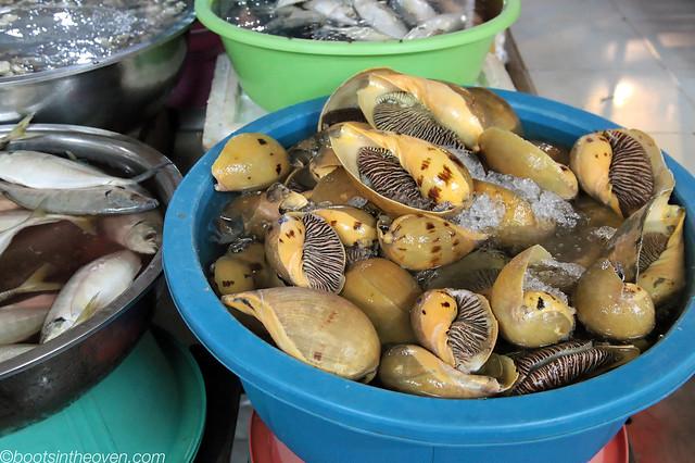 Crazy snails