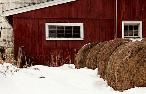 Hay Bales in Snow