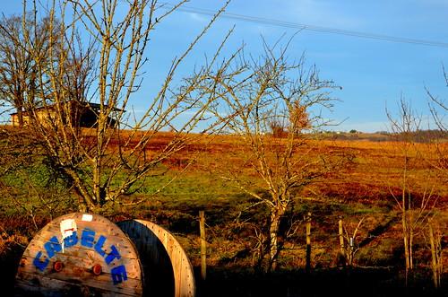 Projan - Gers - 29 février 2012. (Patrimoine agricole III)