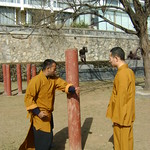 SHAOLIN TEMPLE INDIA HEAD SHIFU KANISHKA TRAINING IN HARD QI GONG WITH SHIFU SHI YANFANG Shaolin Kung Fu India