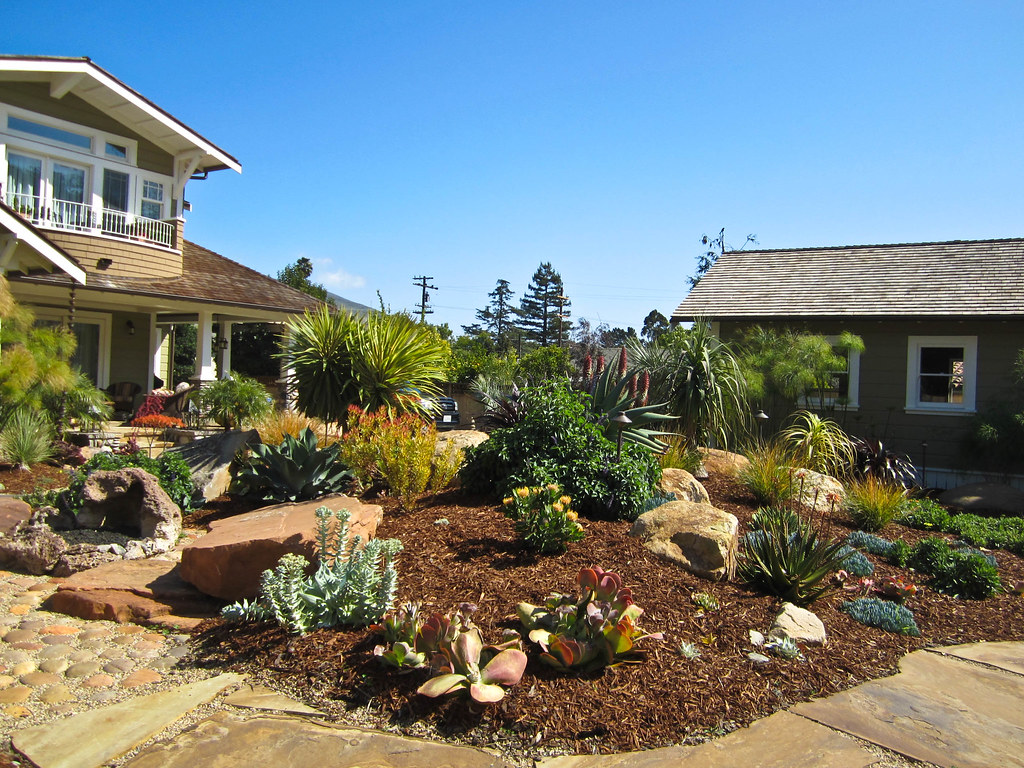 Arizona Backyard Landscaping Ideas