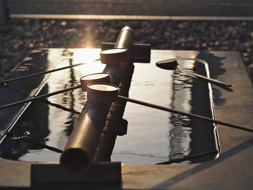 light sunset japan zeiss 50mm shrine olympus nagoya omd 名古屋 f15 sonnar carlzeiss zm m43 em5 若宮八幡 t1550
